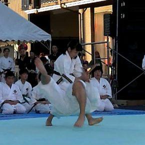 2016年にぎわいフェスタ (6)